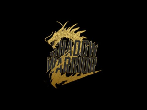 6458288-shadow-warrior-wallpapers