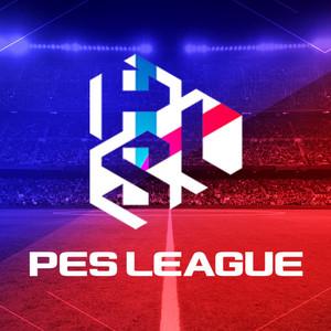 pesleague-profile_image-4f70556cc01993f5-300x300